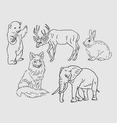 Wild animal sketches vector