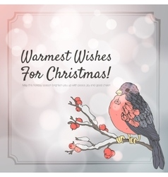 Christmas greeting card with bullfinch and branch vector image vector image