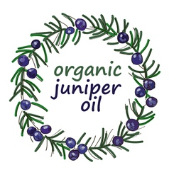 Wreath of juniper twigs for the label color sketch vector