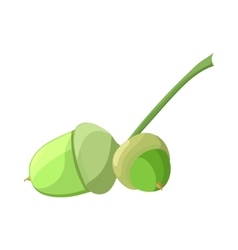 Acorn in cartoon style vector image