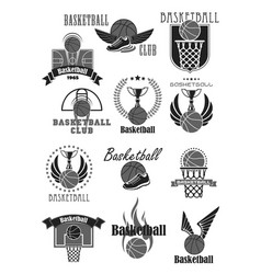 basketball club or championship award icons vector image vector image