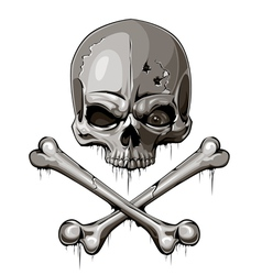Decrepit skull with two crossed bones vector image