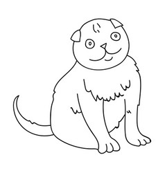 Scottish fold icon in outline style isolated on vector