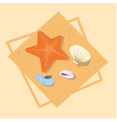 star fish and shells icon summer sea vacation vector image vector image