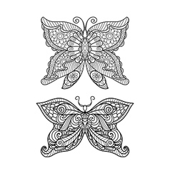 Butterfly coloring page vector