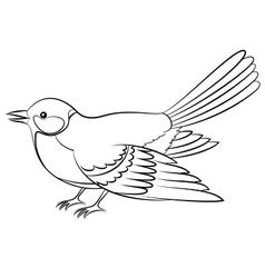 Bird Titmouse Isolated Contours vector image vector image