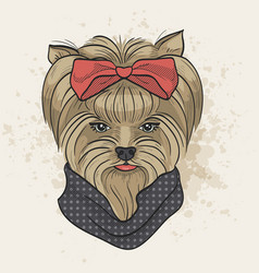 color sketch of elegant dog vector image vector image