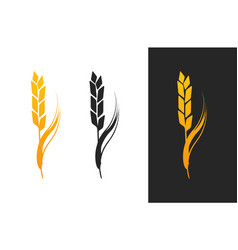 Ears of wheat isolated vector