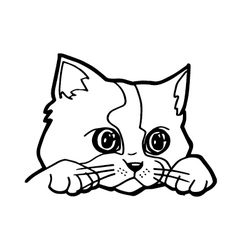 Cat cartoon line art vector