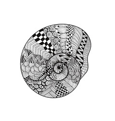 Zentangle stylized black seashell hand drawn vector
