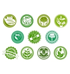 Bio eco organic and natural green labels vector