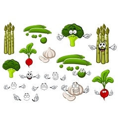 Pea garlic broccoli radish and asparagus vector