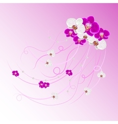 Arrangement of orchid flowers and pearls vector