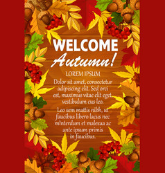 autumn maple leaf foliage rowanbery poster vector image vector image