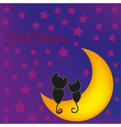 Honeymoon cats in front of moon vector image