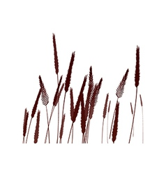 icon reed vector image