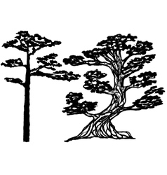 Ink conifer trees vector