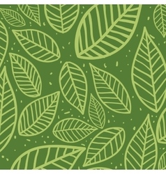 Leaves background nature design graphic vector
