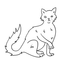 British semi-longhair icon in outline style vector