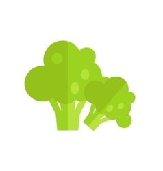 Broccoli in Flat Style Design vector image vector image