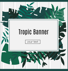 Tropic banner design template tropical leaves vector