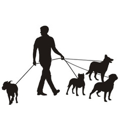Man and four dogs vector image