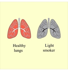 Light smoker the harm of smoking vector