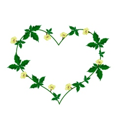 Vine of flower and leaves in beautiful heart shape vector