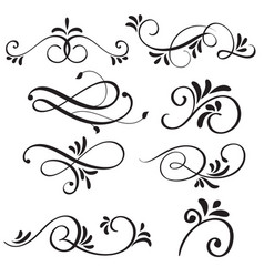 art calligraphy flourish of vintage decorative vector image