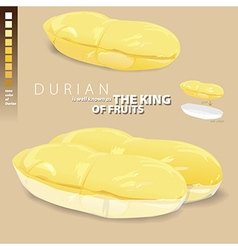 Durian is meaning of the king of Thai fruits vector image