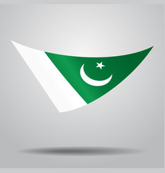 pakistani flag background vector image vector image