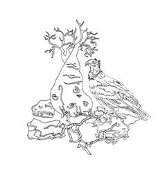 Vulture socotra island on stone bottle tree vector