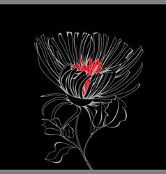 stylized flower on black background vector image