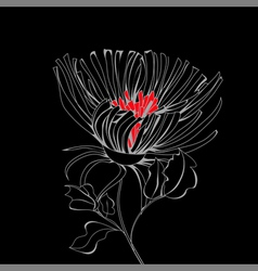 stylized flower on black background vector image vector image