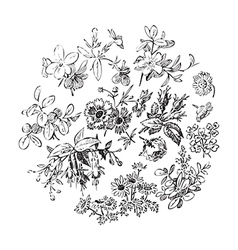Meadow flower and leaf wreath isolated on white vector