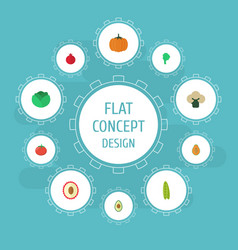 Flat icons bean alligator pear litchi and other vector