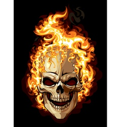 Burning skull on black background vector image vector image