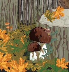 forest with mushrooms vector image