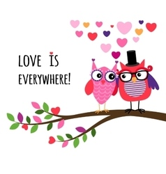 Owl happy valentines day vector