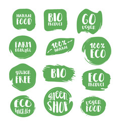 Set of natural stickers vector