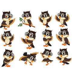 Owl cartoon vector