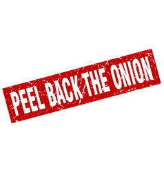 Square grunge red peel back the onion stamp vector