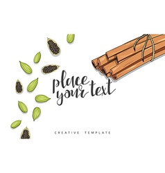 Beauty background with spice cinnamon cardamom vector