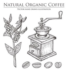 Coffee bean grinder vector