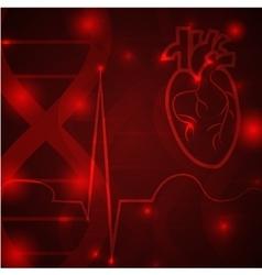 Heart pulse banner vector image vector image
