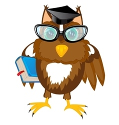 Owl teacher with book vector image vector image