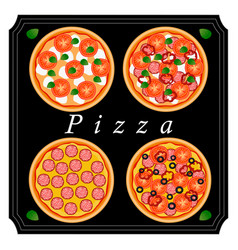the pizza vector image vector image