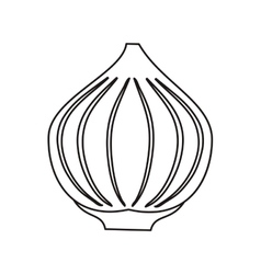 Outline onion vegetable spicy natural icon vector