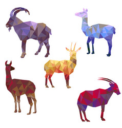 Polygonal silhouettes of animals vector
