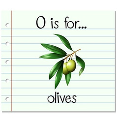 Flashcard letter o is for olives vector